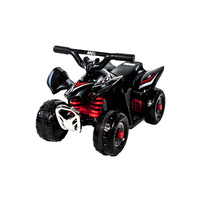 Electric Ride-On Mini Quad Bike 6 Volt Ride On Boys ATV Style